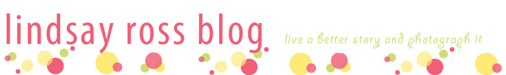 Lindsay Ross Blog logo